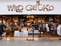 Wild Gecko - Retail Store